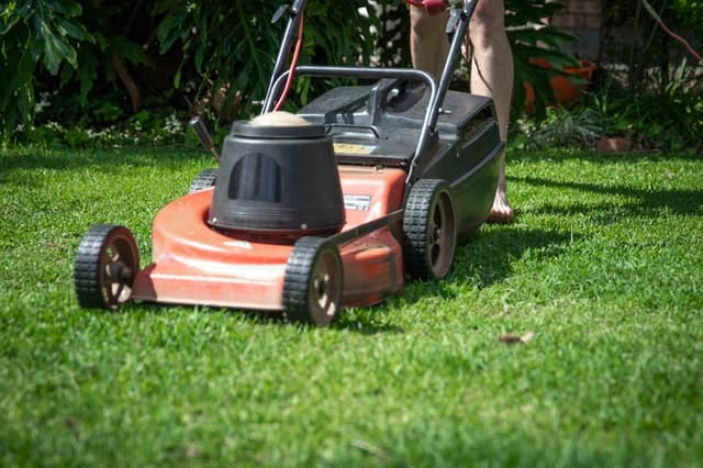kosacka na travu do zahrady