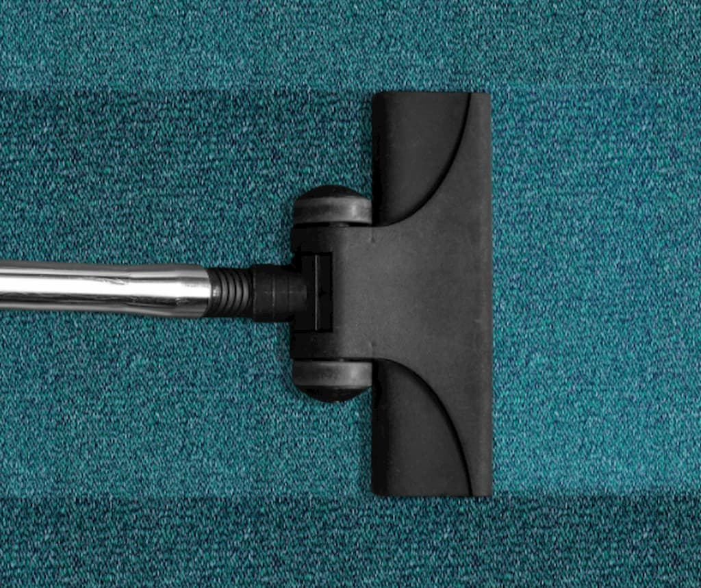 vysavac-vysava-zeleny-koberec (1)