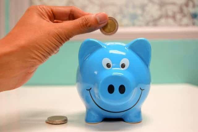 Výsledok vyhľadávania obrázkov pre dopyt minca do prasiatka modra